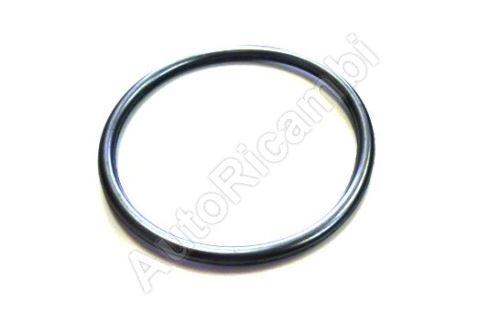 O-ring pump Iveco EuroCargo Tector, Daily 3,0