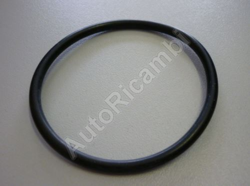 Thermostat gasket Iveco EuroCargo 75E14 O-ring