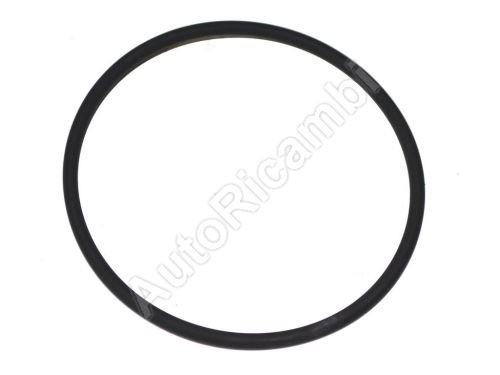 Rear wheel bearing O-ring Iveco Daily 35S