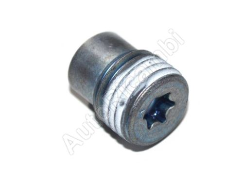 Locking Pin (Gearbox Plug) Fiat Ducato 244/250/2014>