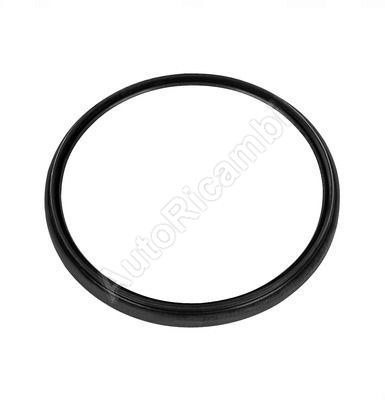 King pin oil seal Iveco Stralis, lower