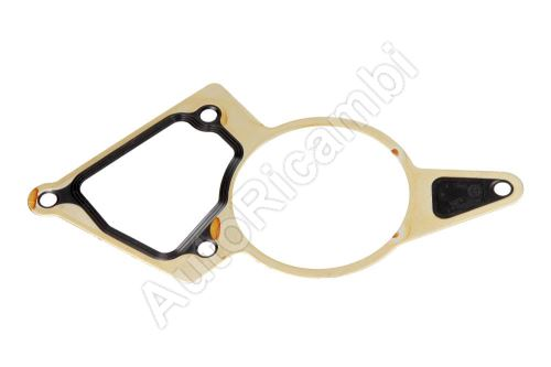 Vacuum pump gasket Ford Transit from 2000 2.0/2.2 TDCi