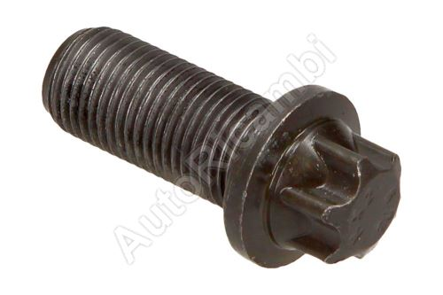 Flywheel bolt Ford Transit, Tourneo Connect 2002-2014 1.8 TDCi